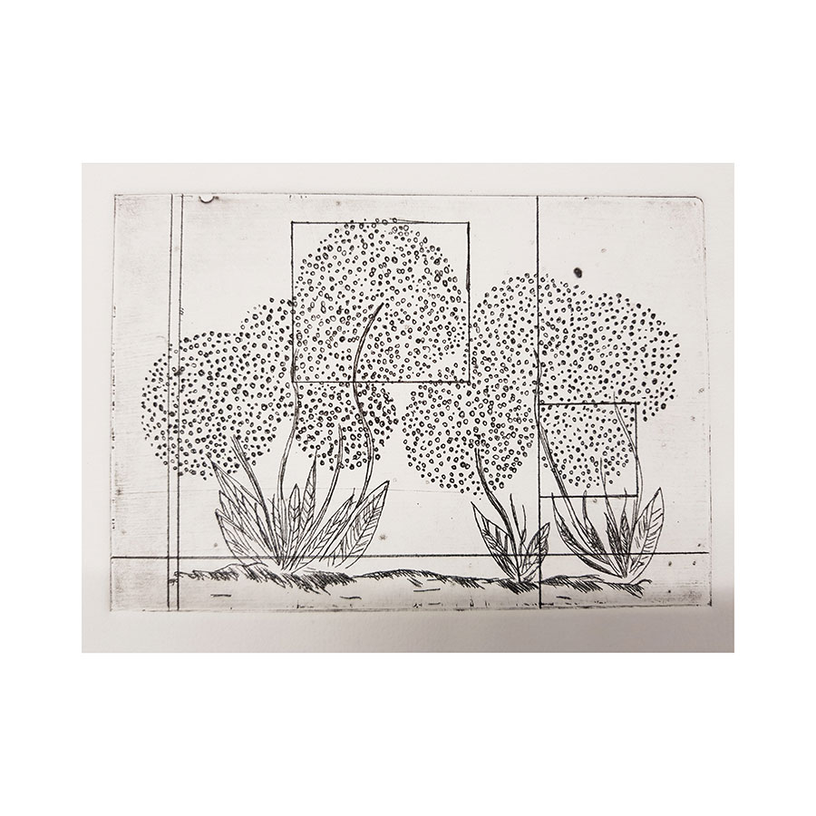 Hydrangeas - 2 - 2019 - Ink on Canson paper - Etching - 10 x 15